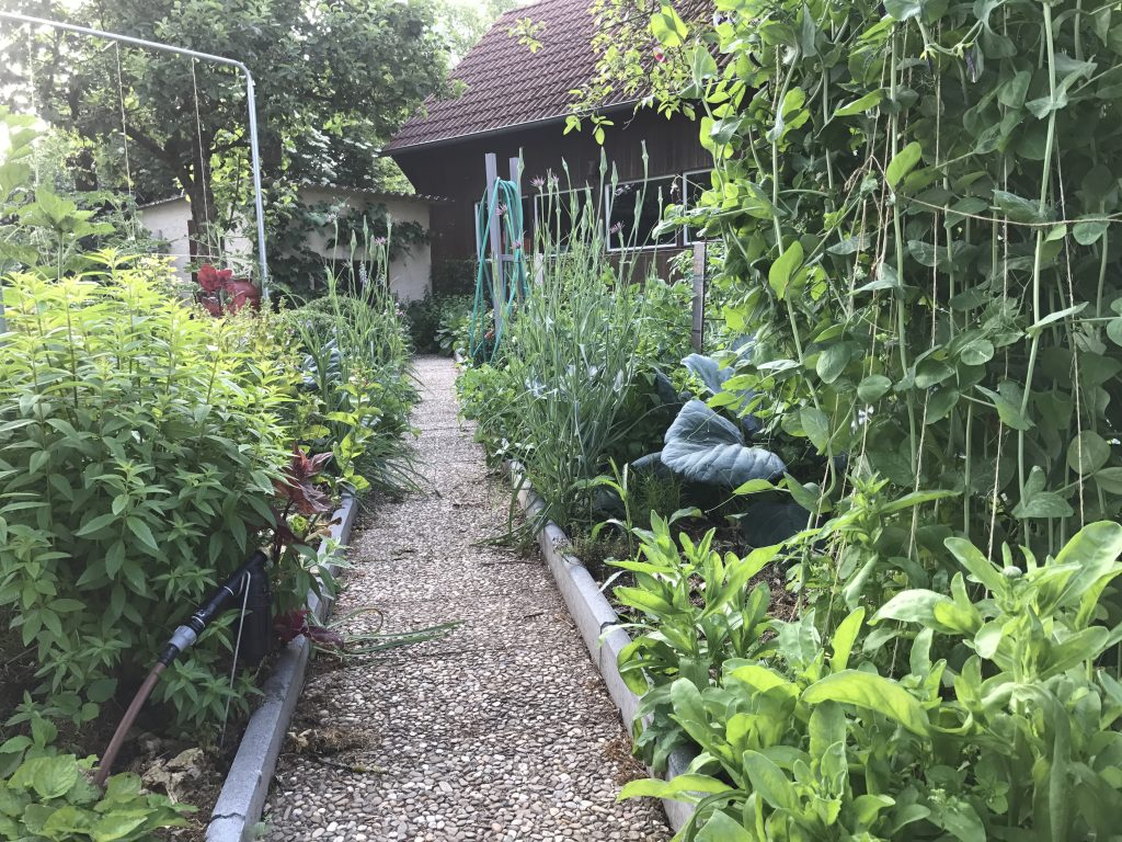 Blick in das Wegegkreuz vom Gemüsegarten