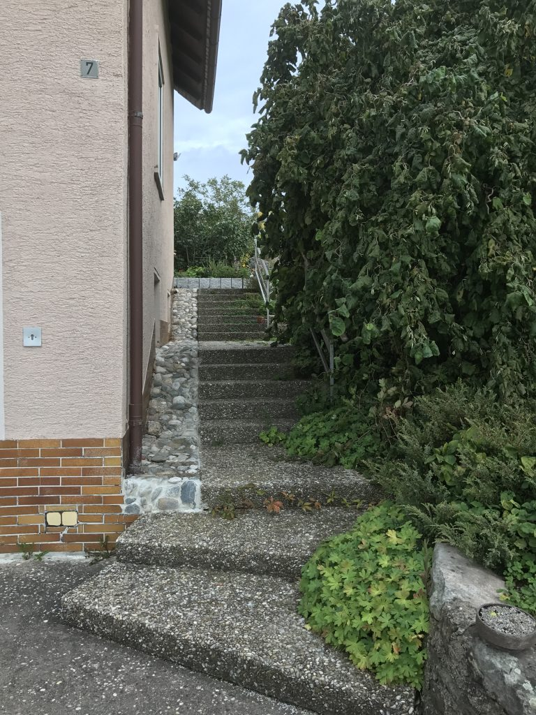 Stufen vom Vorgarten zum oberen Garten