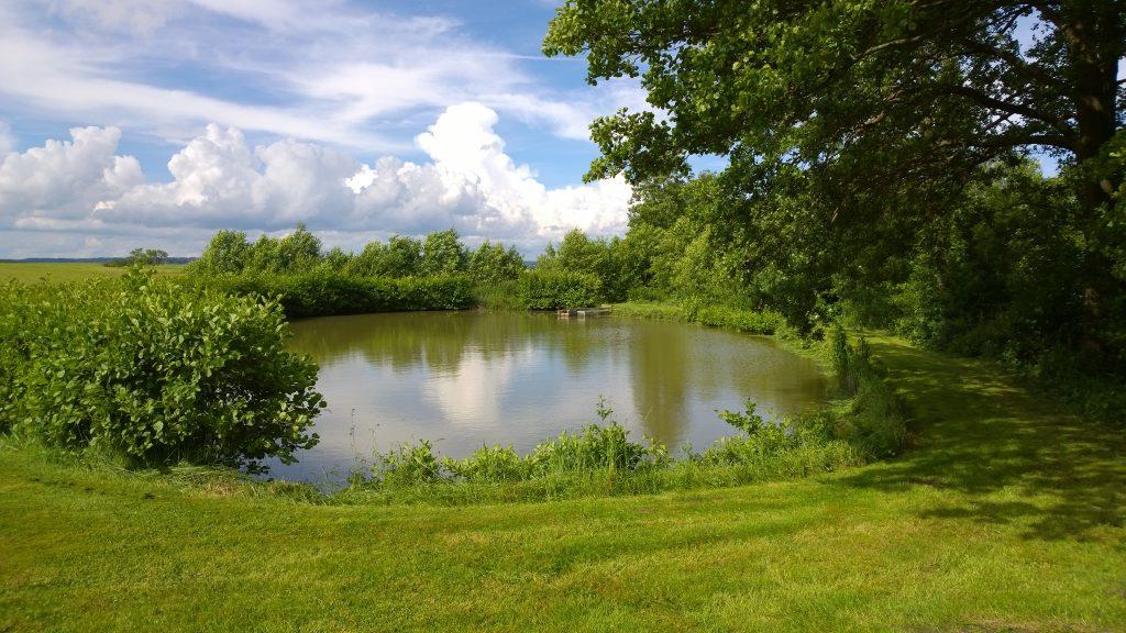Karpfenweiher in fränkischer Landschaft