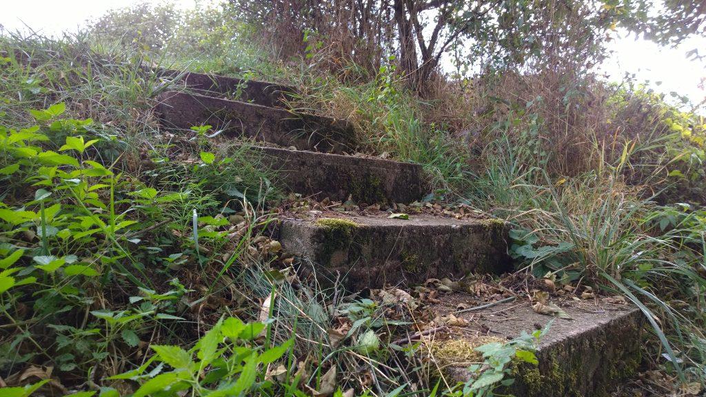 Stufen zum Bach hinunter